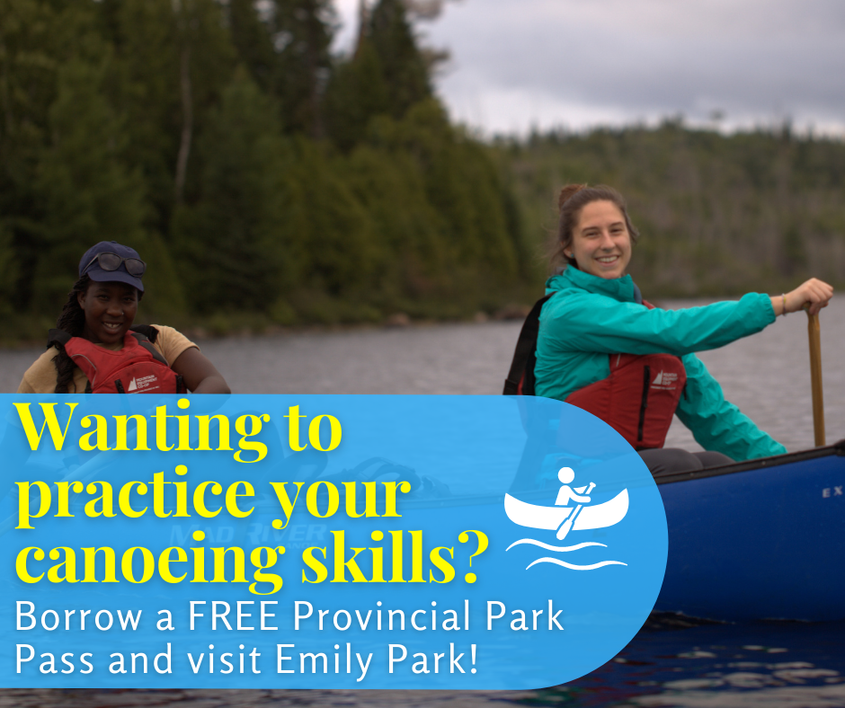 Graphic of two young women canoeing and smiling at the camera