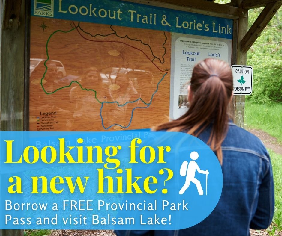 lOOOKING FOR A NEW HIKE