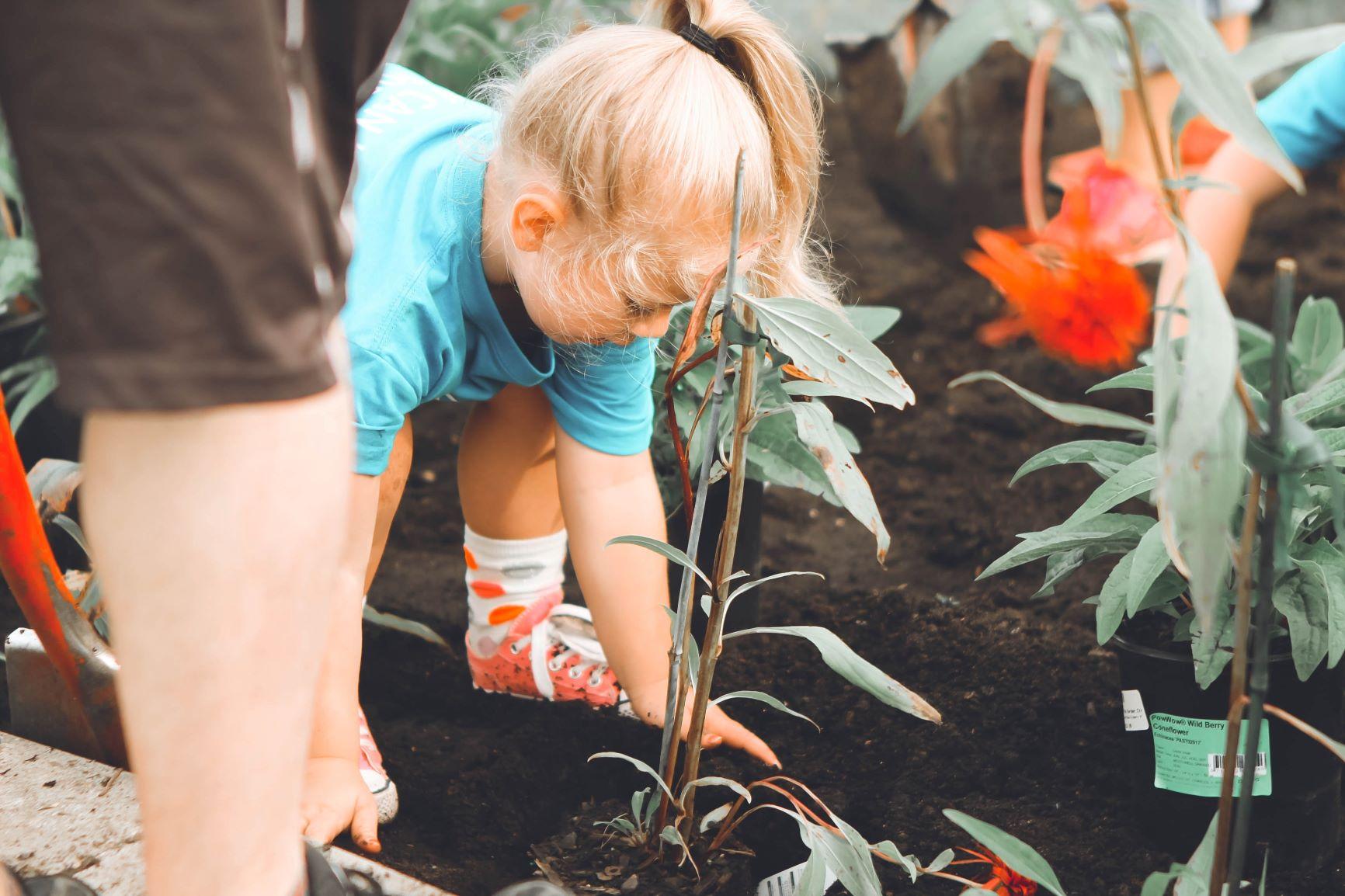 Small child in garden